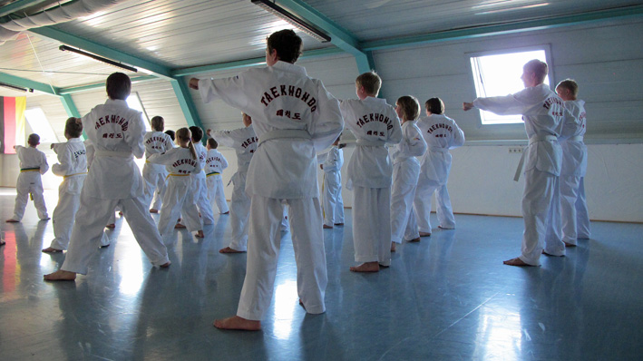 Taekwondo_2013_02