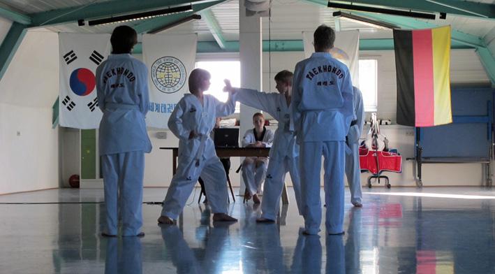 Taekwondo_2013_03
