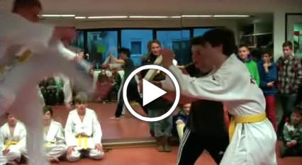 taekwondo_video_2014